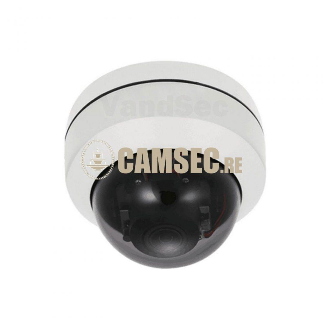 Caméra Dôme Analogique